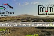Tour del Vino Lanzarote