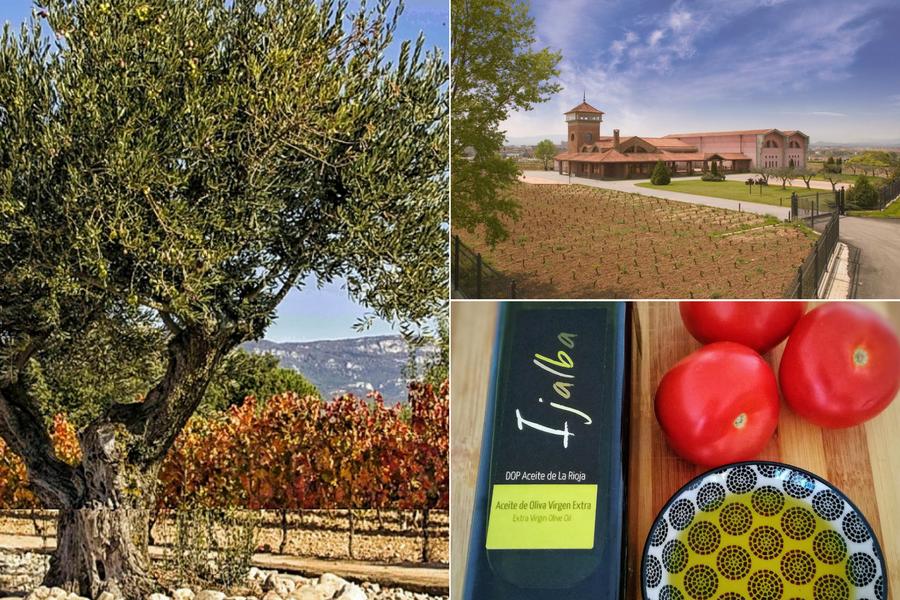 La Rioja - Viña Ijalba
